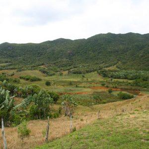 domaine de la grave, 3km hiking, ecomauritius.mu