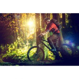 biking-ecomauritius.mu