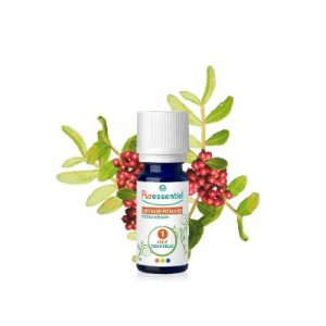 Pistacia lentiscus essential oil-ecomauritius.mu