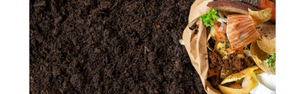 A Beginner's Guide to Making Compost
