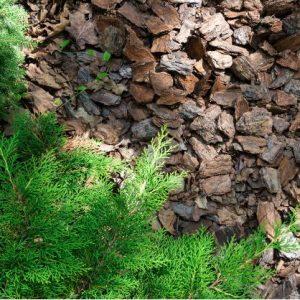 wood chippings on ecomauritius.mu