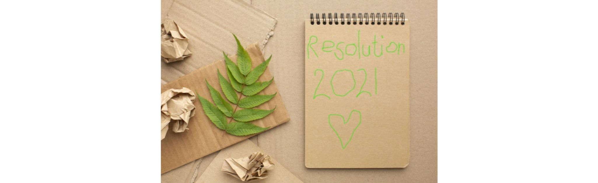 New Year's Resolutions That Will Help You Help the Planet
