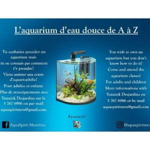 Fresh water aquarium course on ecomauritius.mu