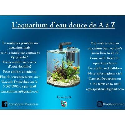 Fresh water aquarium course on ecomauritius.mu