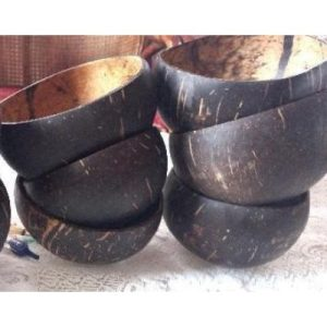 plain coconut bowls 2 on ecomauritius.mu